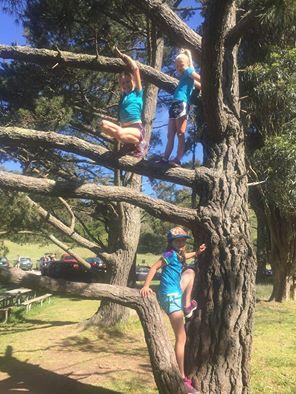 three girls in a tree